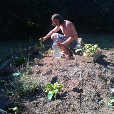 Planting in the spiral garden